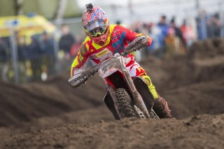 Evgeny Bobryshev in the Netherlands